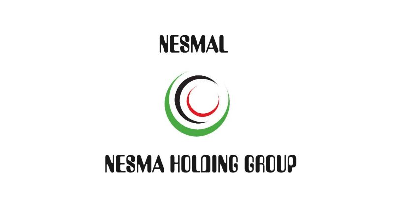 Nesmal Investment is looking for Accountant - STJEGYPT