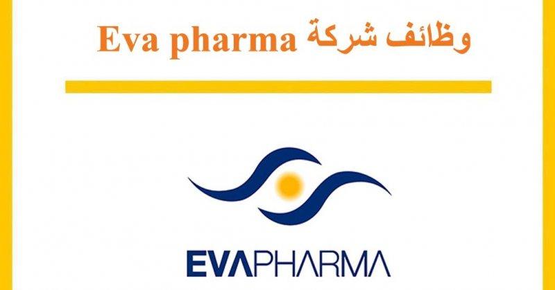 وظائف محاسبين بشركة ايفا فارما للادوية - STJEGYPT