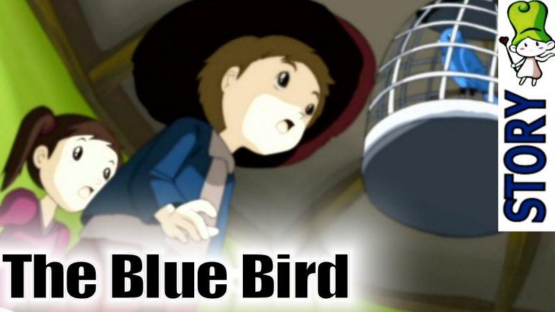 The Blue Bird - STJEGYPT