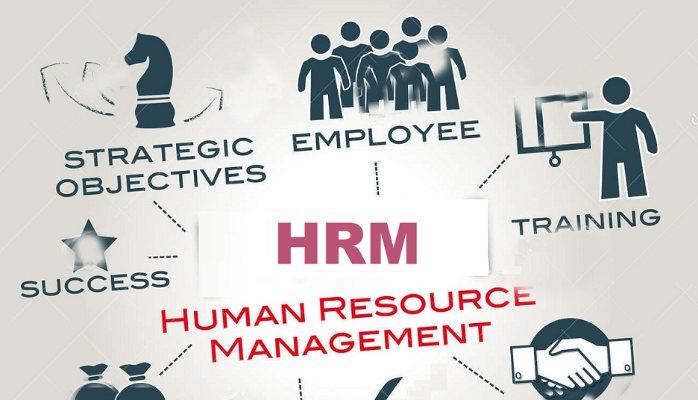 الماتريال الكاملة في الــ HR ادارة الموارد البشرية - STJEGYPT