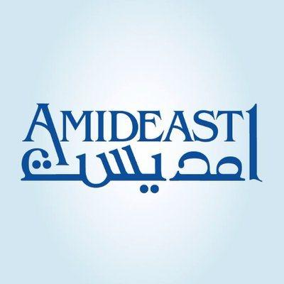 اعلان منحة امديست لطلاب مصر برنامج قادة الغد - STJEGYPT