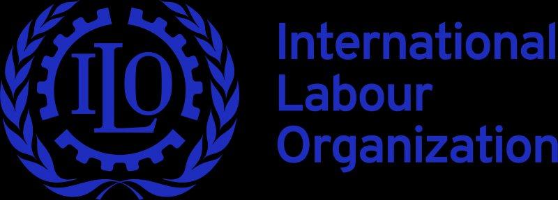 Finance and Administrative Assistant - International Labour Organization - STJEGYPT