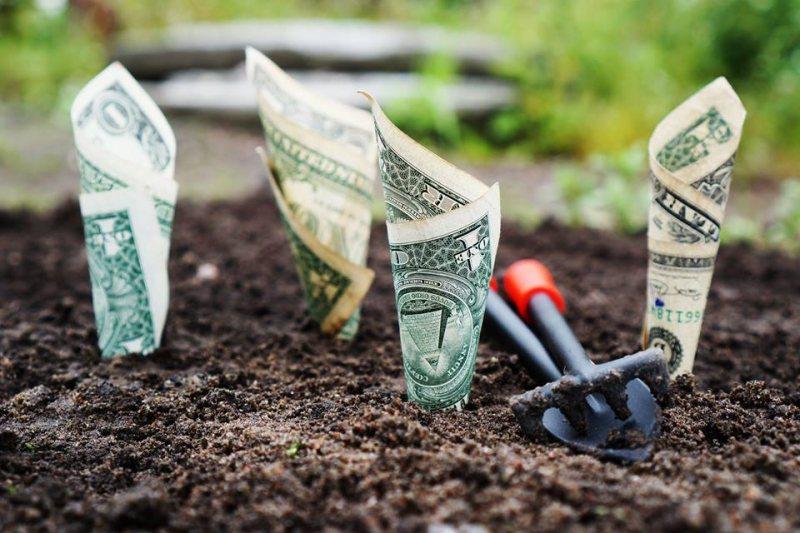 ما هي أكثر النصائح المالية فعالية التي تلقيتها على الإطلاق؟ - STJEGYPT