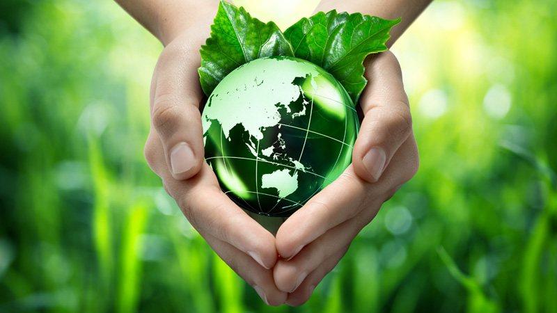Conservation and Restoration Ecology