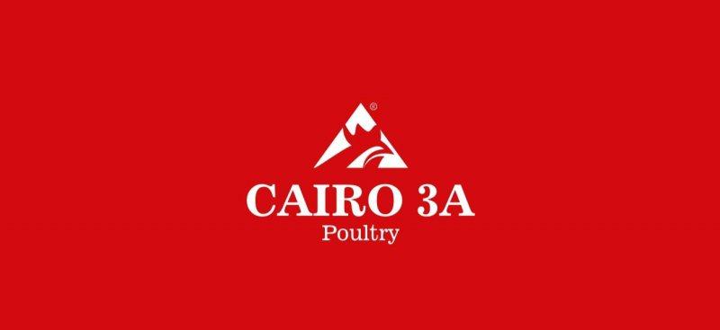 Receptionist - Cairo Three A - STJEGYPT