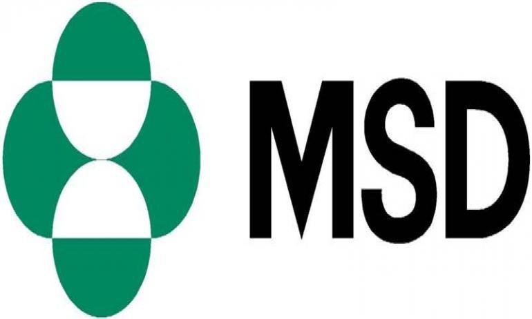 تدريب صيفي لطلبة صيدلة بشركة MSD للأدوية لعام 2018 - STJEGYPT