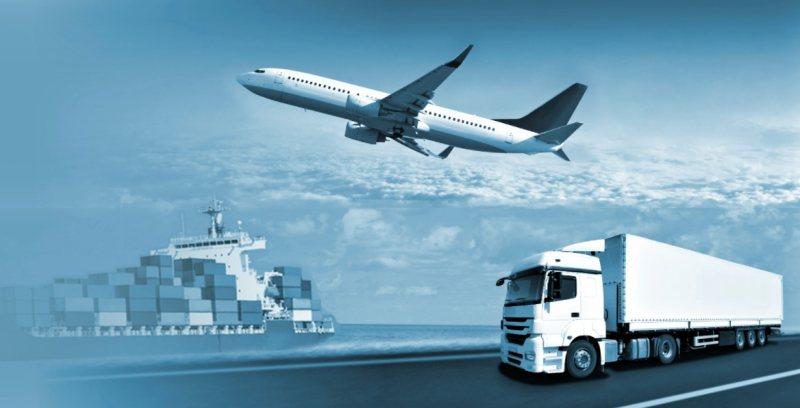 Import/Export logistics specialist - STJEGYPT