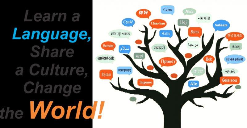 إزاي تتقن أي لغة أونلاين ومجانًا؟ - STJEGYPT