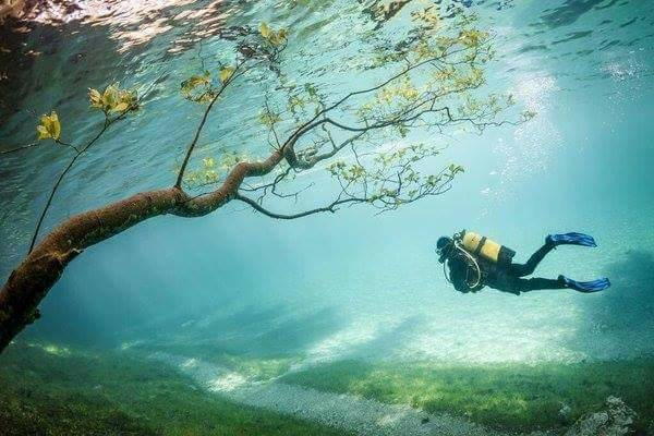البحيرة الخضراء بالنمسا وهي بالأصل حديقة تغمرها المياه بعد ذوبان الثلوج - STJEGYPT