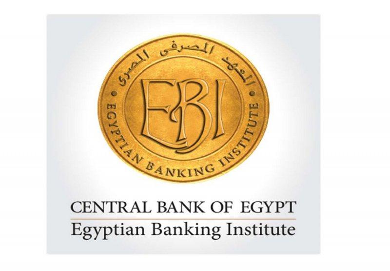 Application & Database Developer - المعهد المصرفي المصري - STJEGYPT