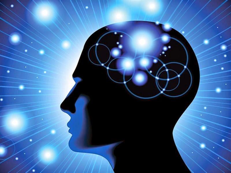 سلسلة علم النفس | الحلقة الرابعة والعشرون: الدماغ مقابل التحيز