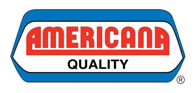 Americana is looking for Accountant - STJEGYPT