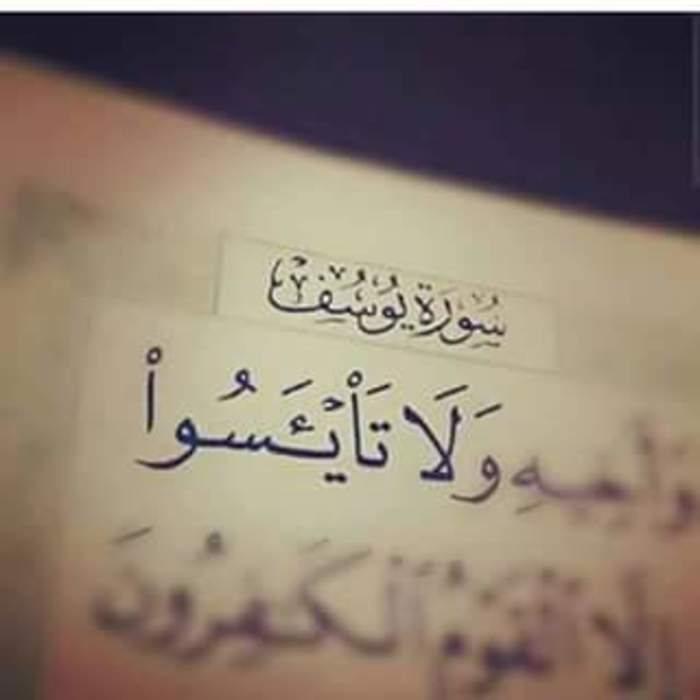 من أروع ما قرأت من قول الإمام إبن القيّم رحمه الله : - STJEGYPT