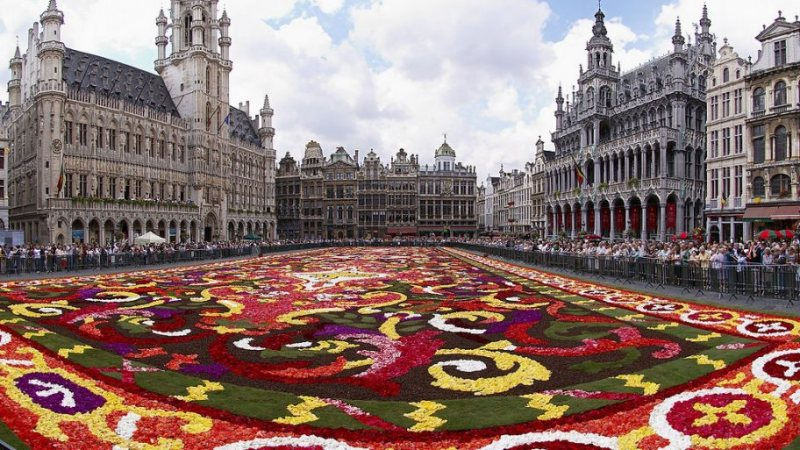 برنامج تبادل ثقافي لمدة 12 شهر منظمة الشباب في بروكسل , بلجيكا - STJEGYPT