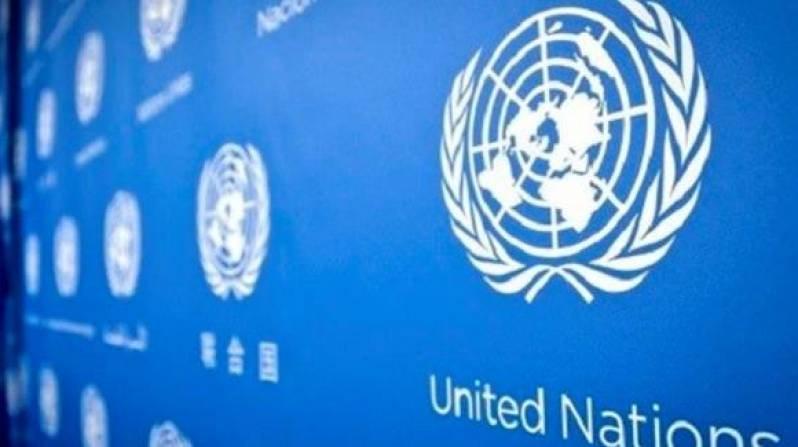 فرصة تدريبية بالبرنامج الانمائي للامم المتحدة UNDP لمدة 6 اسابيع - STJEGYPT