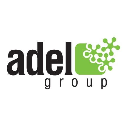 Accountant at i-adelgroup - STJEGYPT