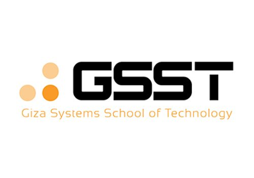 Junior Accountant , Giza Systems - STJEGYPT