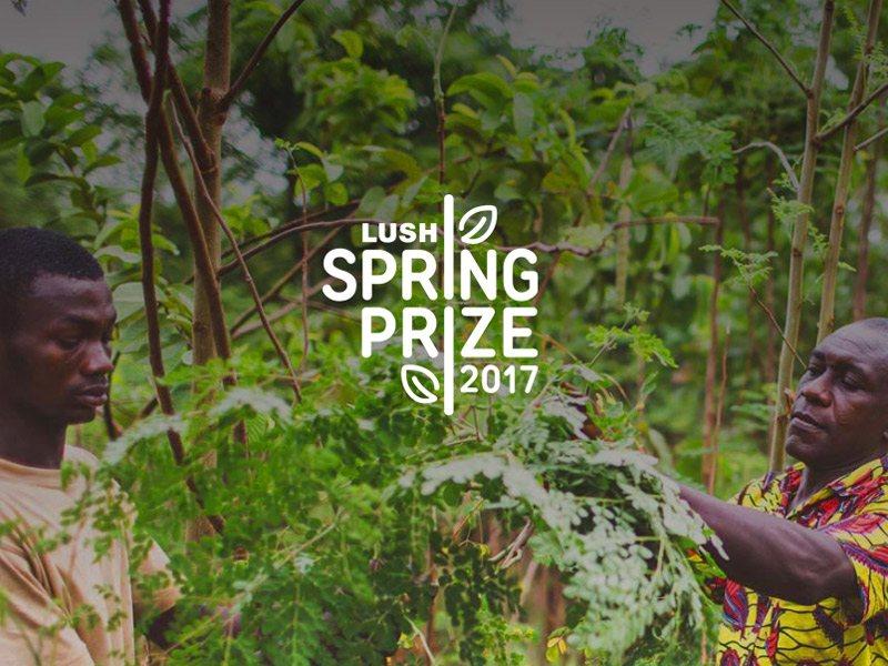 بجائزة تصل إلى ٢٠٠٠٠٠ جنيه استرليني لرواد الأعمال وأصحاب المشاريع التنموية - STJEGYPT