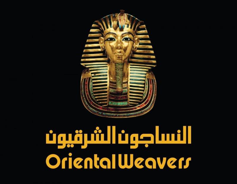 Oriental Weavers is now hiring  Financial Analyst - STJEGYPT