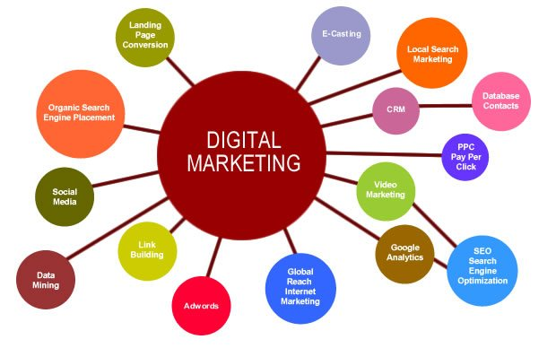 Senior Digital Marketing Specialists - STJEGYPT