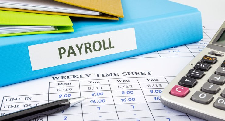 Payroll Section Head - STJEGYPT